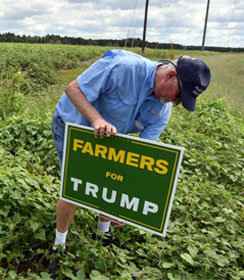 "Farmer putting ""Farmers for Trump"" sign in the ground"