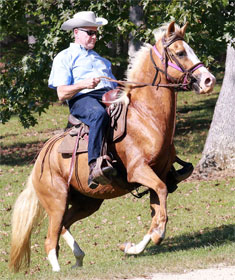 Roy Moore on horseback