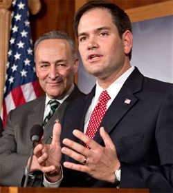 Chuck Schumer and Marco Rubio