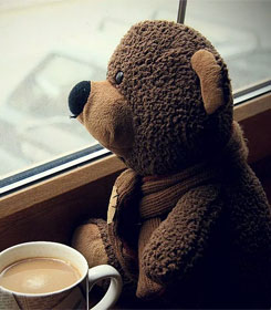 Sad teddy bear looking out window
